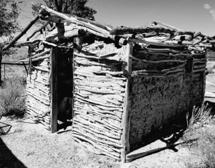 mud shack bw