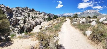 The Buttermilk Road