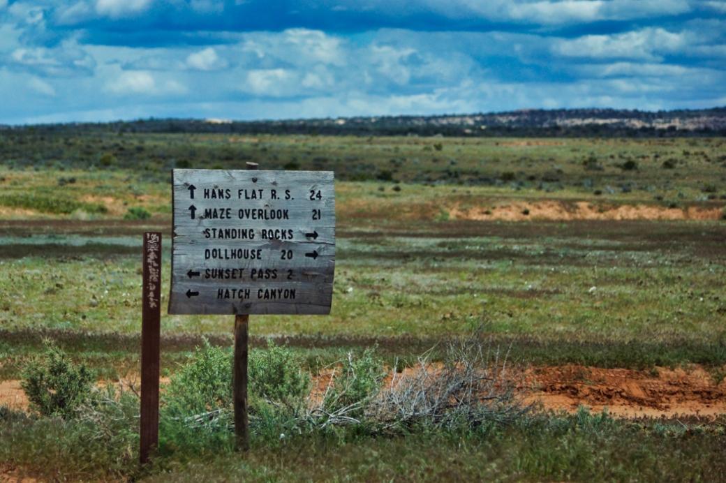 Maze Signage