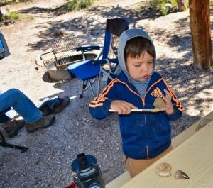 Finn cleans fossils