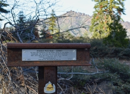 Summitt Post_lr